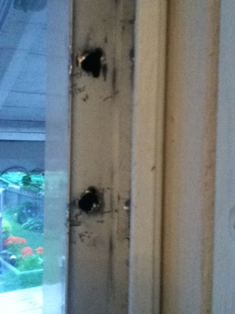 screen door hinge busted!-door-1.jpg
