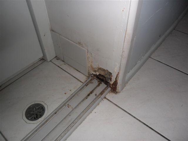 Rotten Door Frame (pics included)-door-frame.jpg