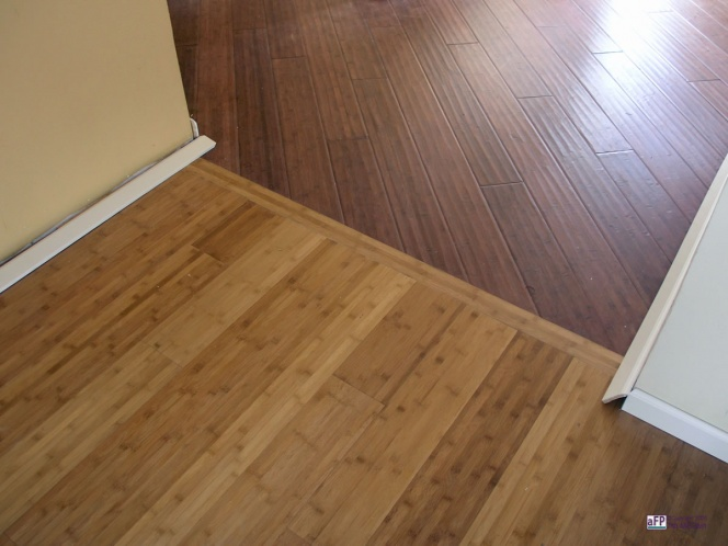Den and hallway, same kind flooring or different kind of flooring-doorway-transition3.jpg