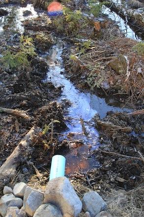 Organic Matter or something else?-drainage-2.jpg