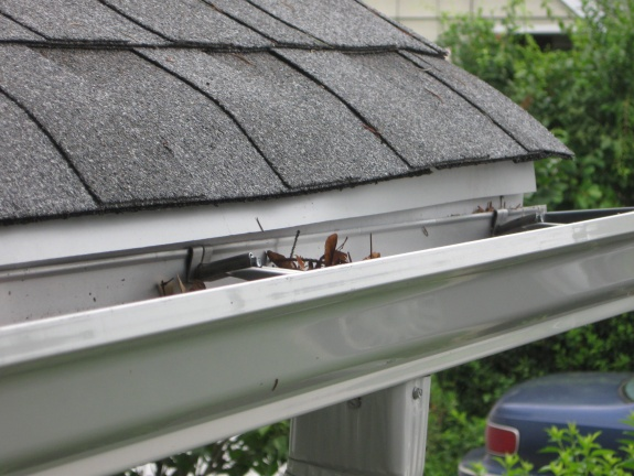 Drip Edge Gaps-drip-edge-gap-between-fascia-cutter.jpg