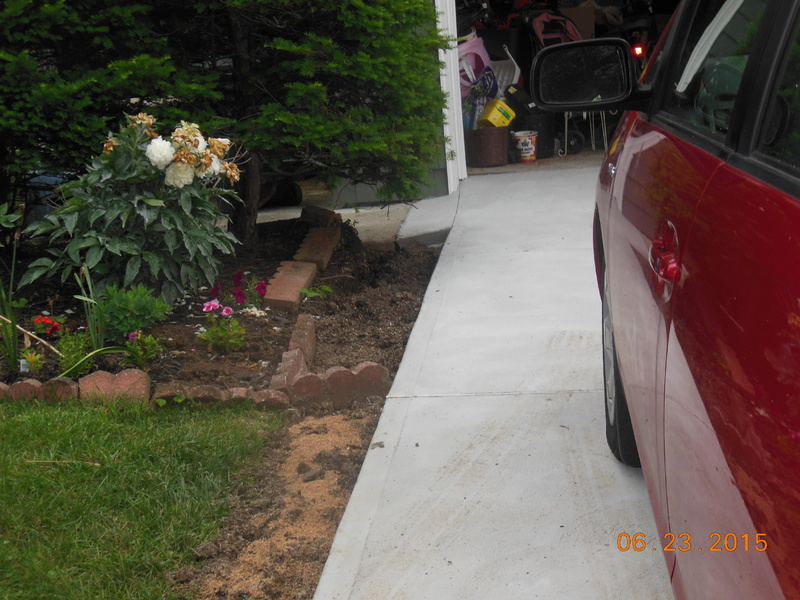 New Drivewqay, hardscape for the sides?-drive-done-002.jpg