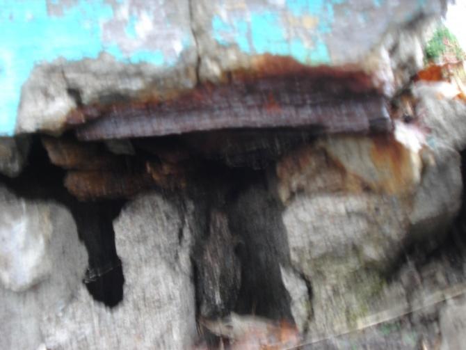 Repairing front entrance-dsc00084.jpg