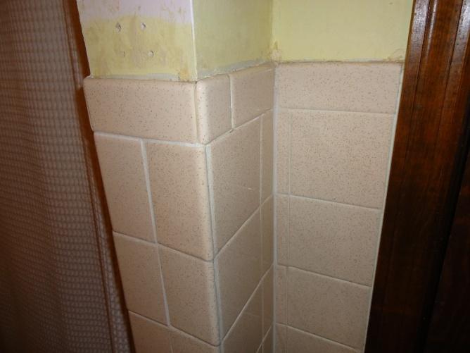 Bathroom tiling-dsc00153-large-e-mail-view.jpg