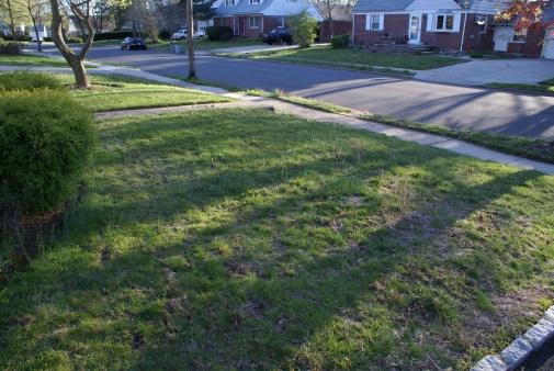 "Herman Munster's grass looked better ""HELP""-dsc00160-.jpg"
