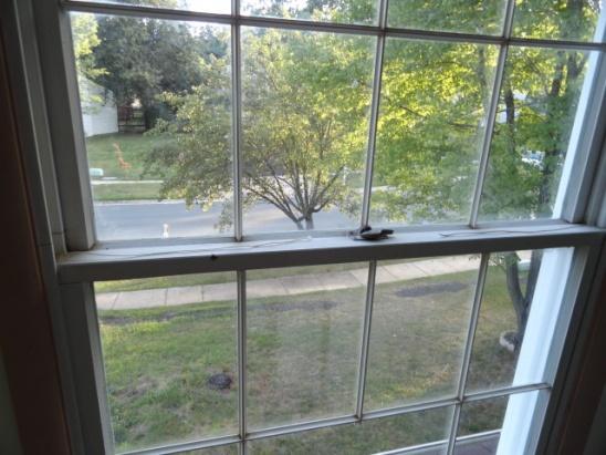 cords broken on vinyl window-dsc00237.jpg