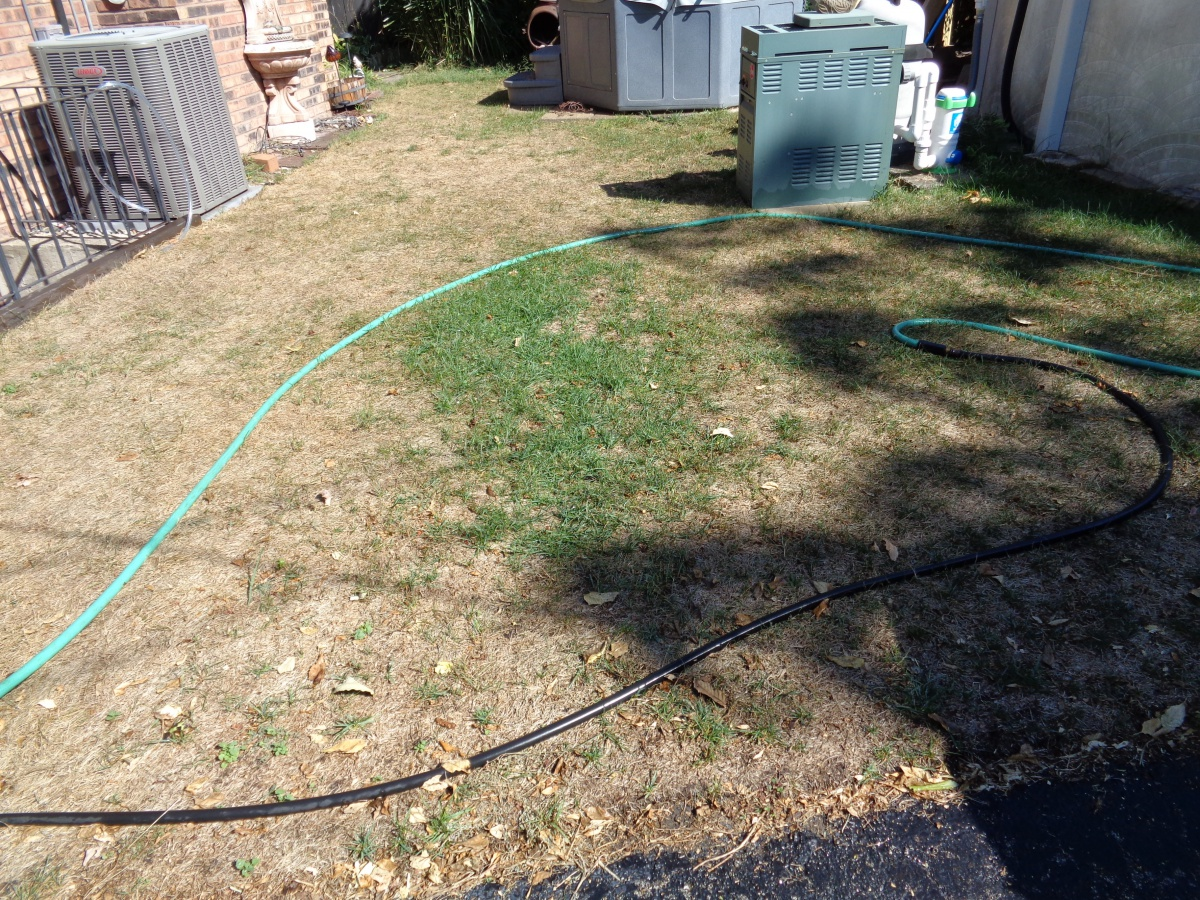 Second Try at Laying Sod to Dead Lawn Spots-dsc00359.jpg