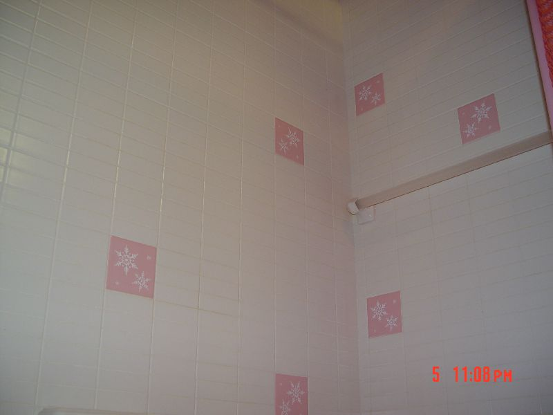 Bathroom flooring (tile?)-dsc00389s.jpg