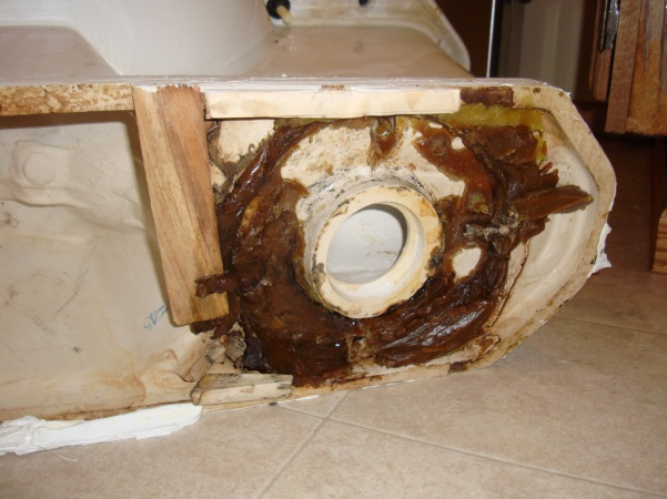 Toilet issue:  Shims, wax, general disarray.-dsc00529.jpg