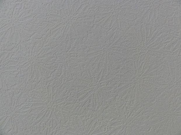 Need Help recreating a ceiling pattern-dsc00604.jpg