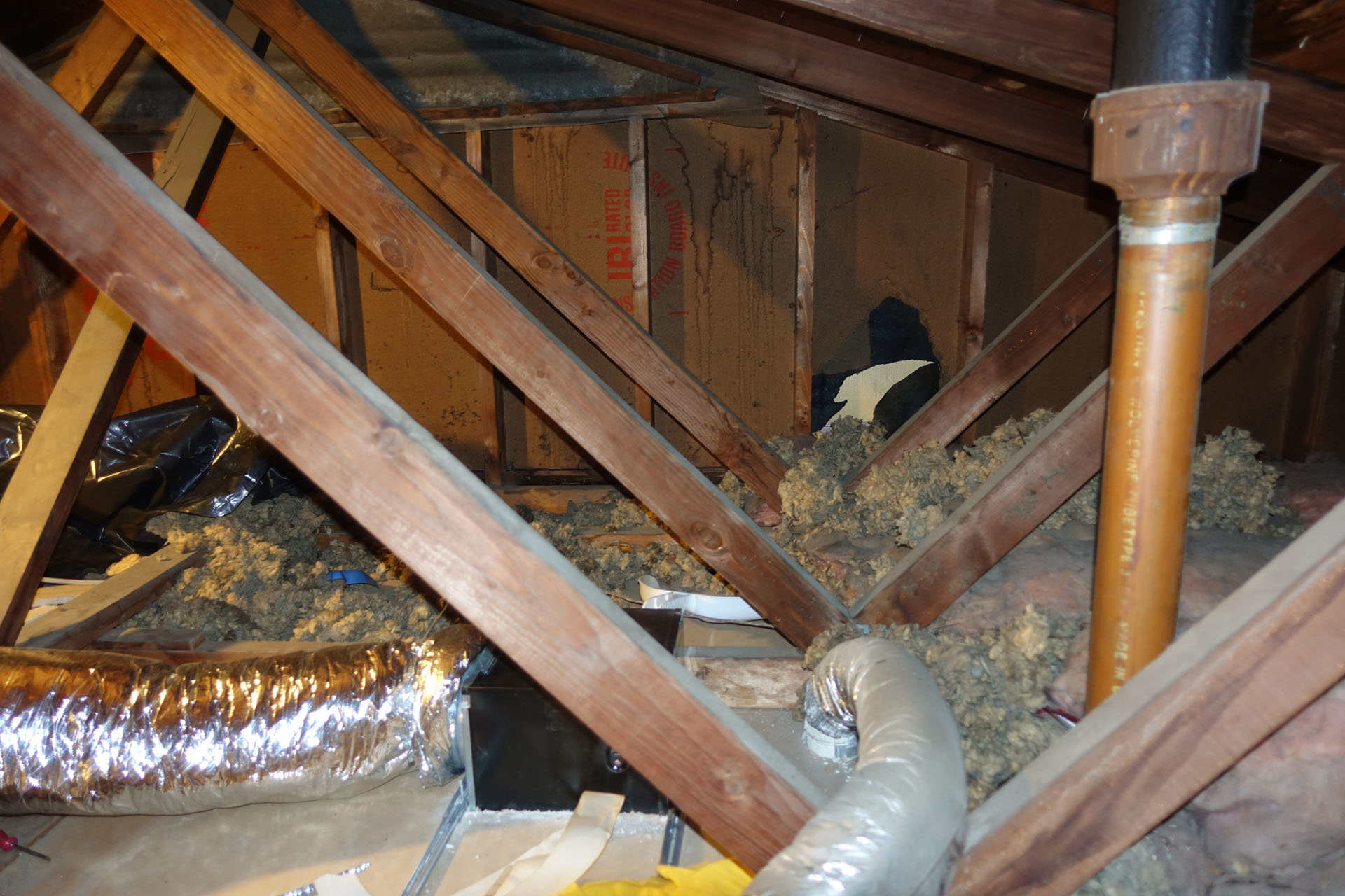 Attic Insulation after testing attic for mold-dsc00778.jpg