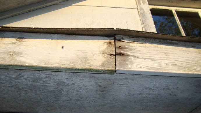 need advise with wood rot before painting-dsc00855.jpg