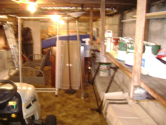 Renovate the basement or add an office shed?-dsc01127.jpg