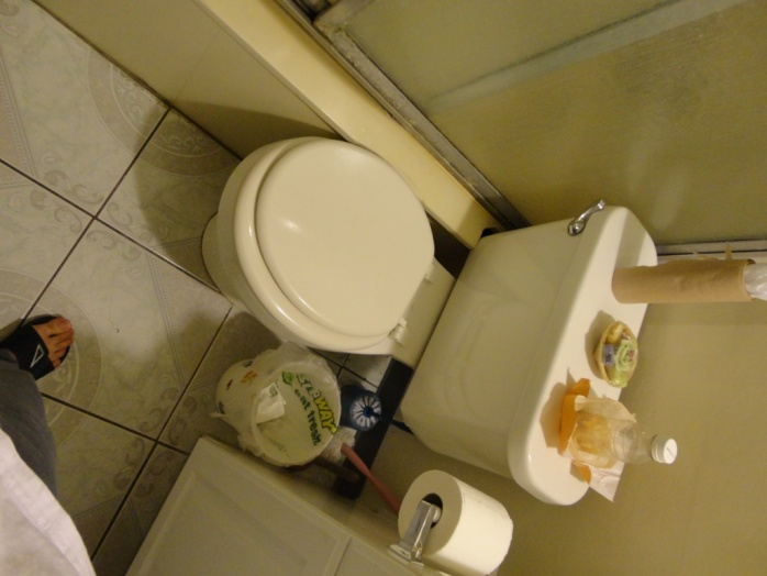 A toilet tank that's a pain to remove?-dsc01174s.jpg