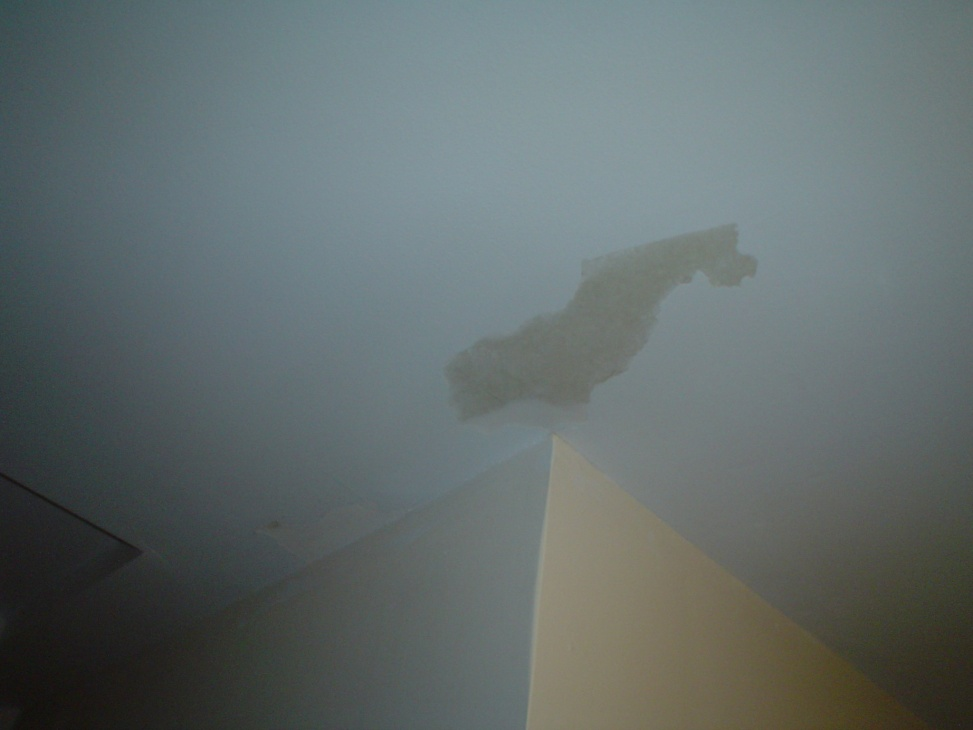 Ceiling paint cracking-dsc01404.jpg