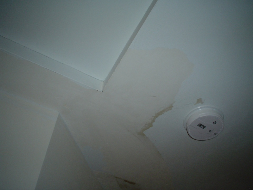 Ceiling paint cracking-dsc01405.jpg