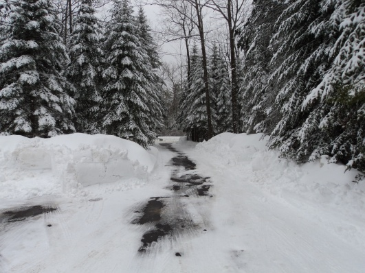 thinking about riding snowblower-dsc01606.jpg