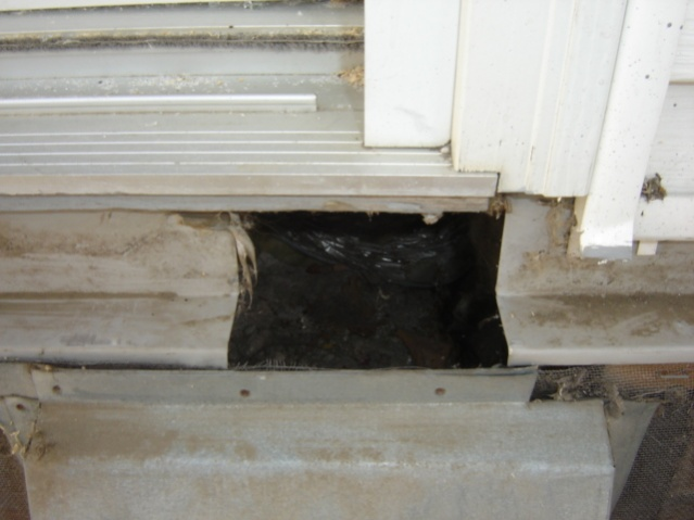 Deck repair, oops replace, oops new patio door thread-dsc01923.jpg