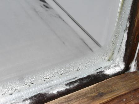 Condensation on Windows (PICS) - Advice Please-dsc02982.jpg