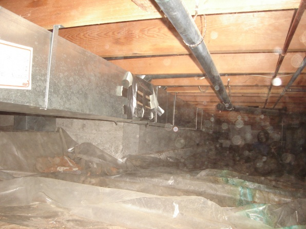 Crawl Space Questions (with pics)-dsc03257.jpg