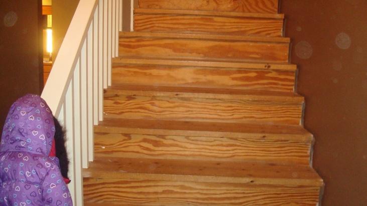Finishing 20yr old pine stairs-dsc03512.jpg