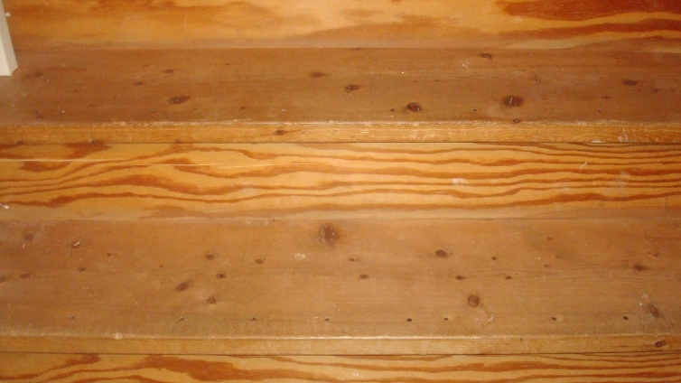 Finishing 20yr old pine stairs-dsc03513.jpg