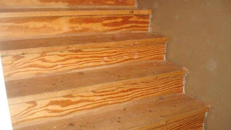 Finishing 20yr old pine stairs-dsc03517.jpg