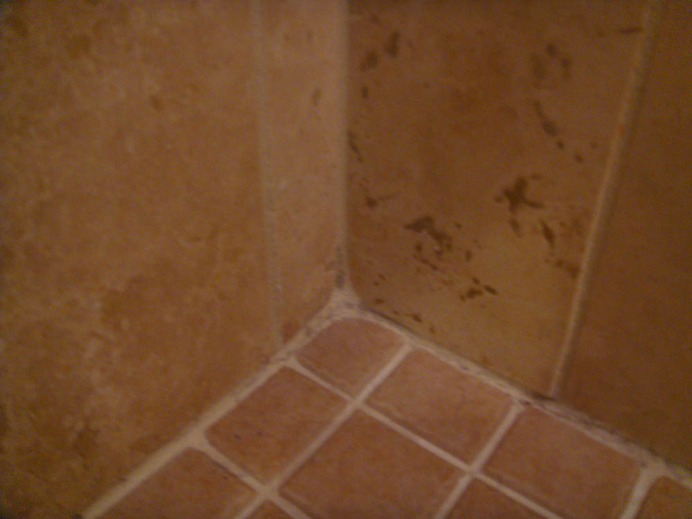 shower tile question-dsc03520.jpg