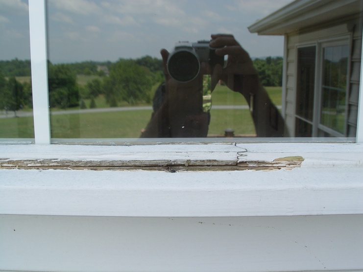 How do replace rotted wood in window frame?-dsc03804.jpg