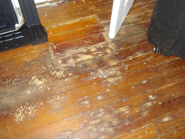 Best way to refinish pine flooring??-dsc04628.jpg