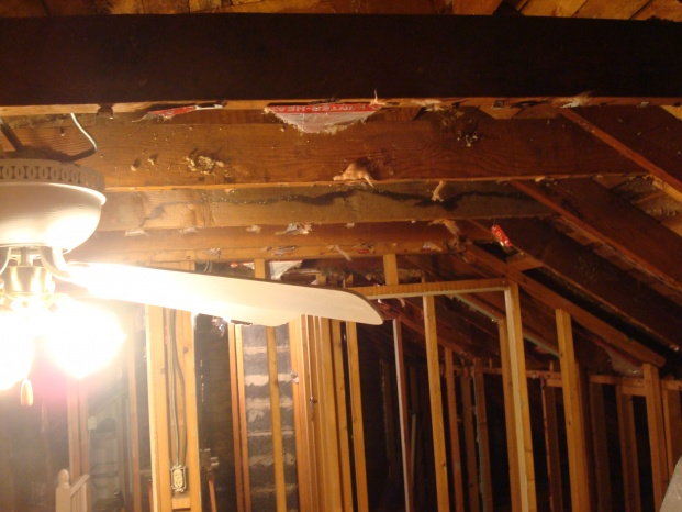 Rasing rafter ties and Venting Question. Does  AtlanticWBConst. Still Frequent?-dsc06620.jpg