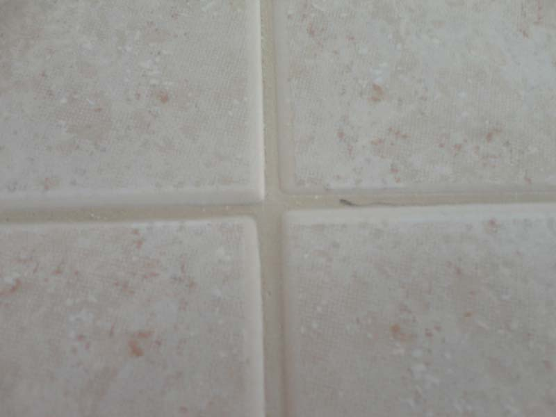 Shower Wall Product Identification-dsc07136-edited.jpg