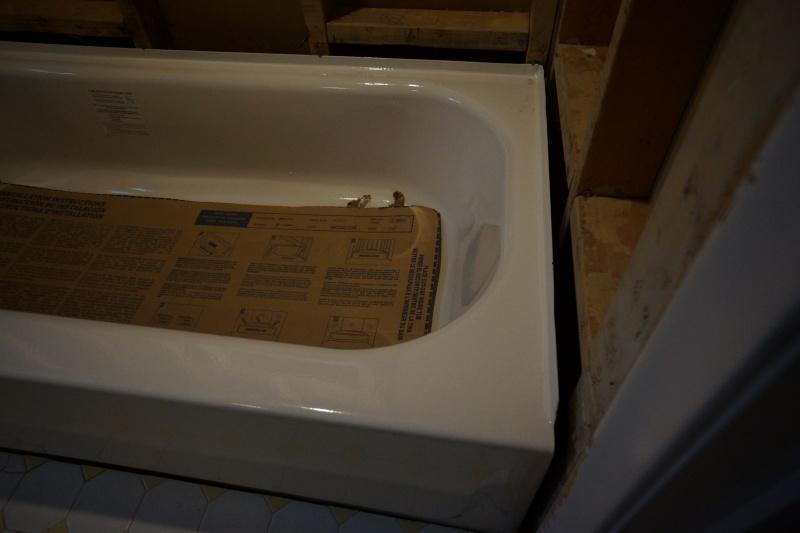 Bathroom Remodel - General Questions-dsc08372.jpg