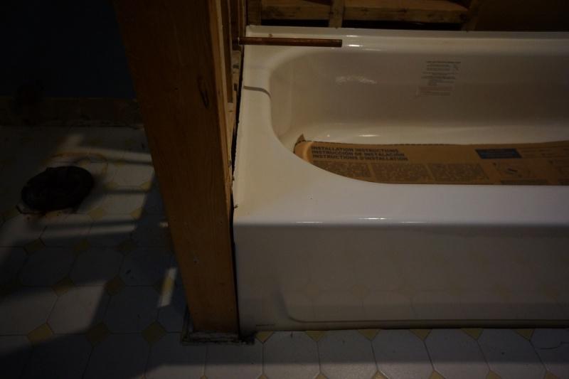 Bathroom Remodel - General Questions-dsc08373.jpg