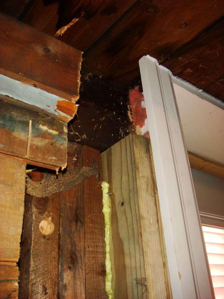 Outside joist removed for door-dsc09984.jpg