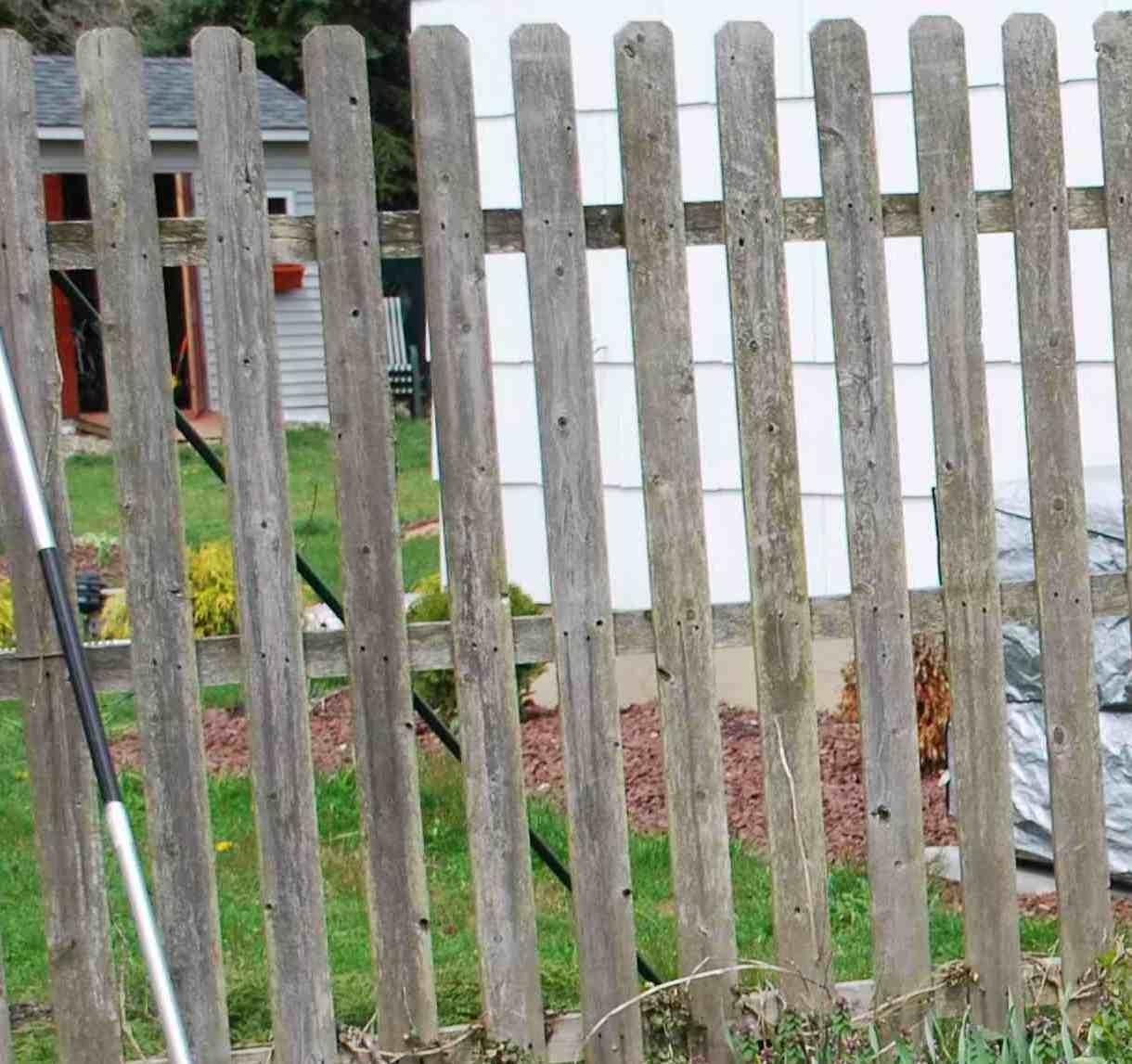 Wooden fence-dsc_0119.jpg