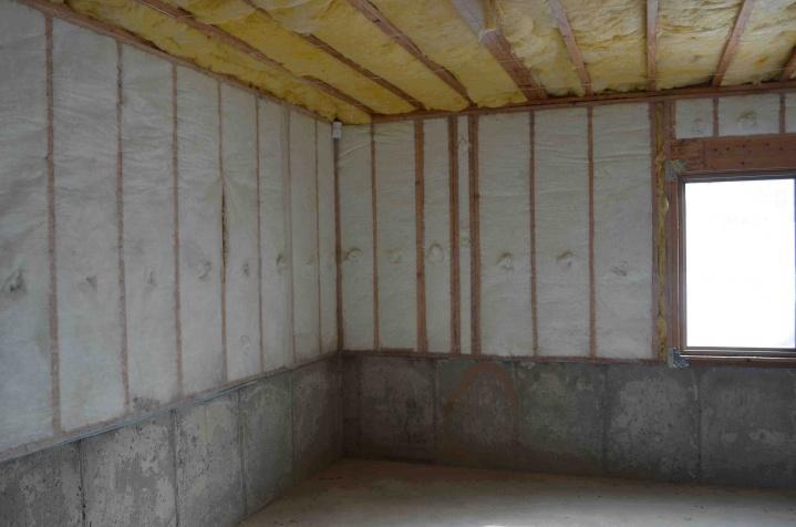 Insulation for Walkout basement-dsc_0160.jpg