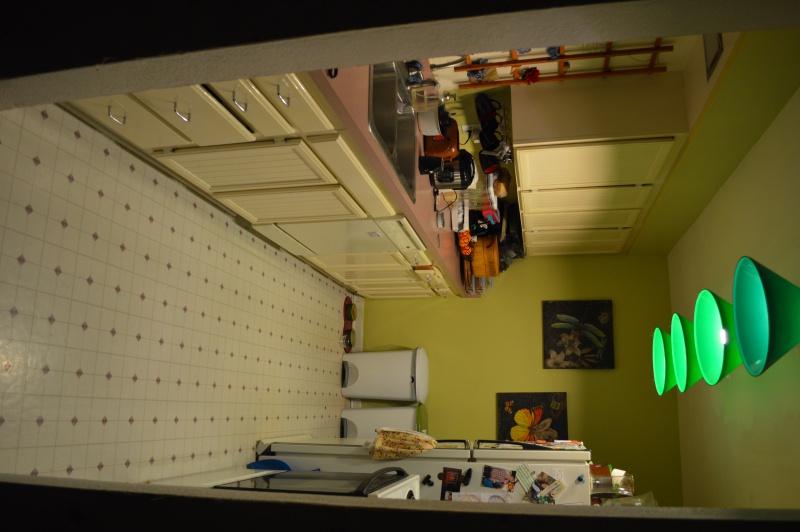 Rental kitchen needs a makeover-dsc_0525.jpg