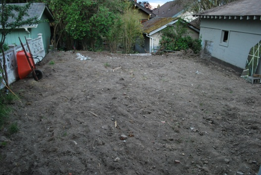 ripped yard down to dirt, it slopes badly, now what?-dsc_1195.jpg