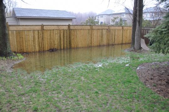 Water standing in the backyard - clay soil-dsc_1214.jpg