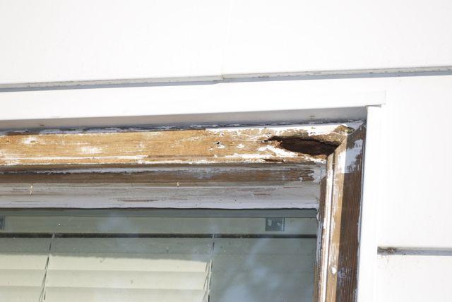 Cutting out Rotten Window Frame-dsc_3874.jpg
