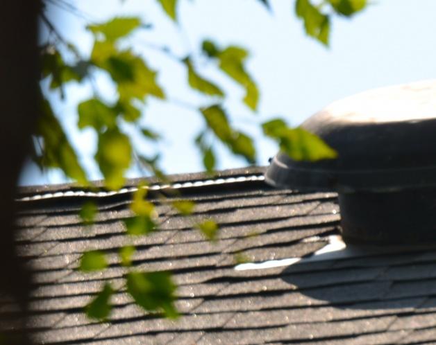 proper roofing technique-dsc_9190.jpg