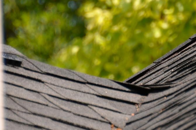 proper roofing technique-dsc_9203.jpg