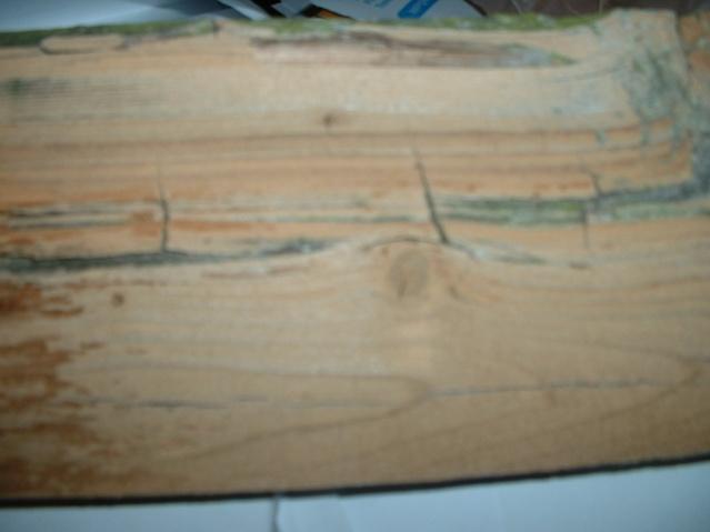 Wooden fence-dscf0002.jpg