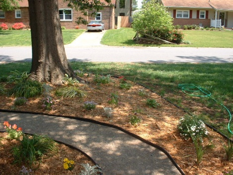 Low Retaining Wall Around A Tree Landscaping Amp Lawn Care