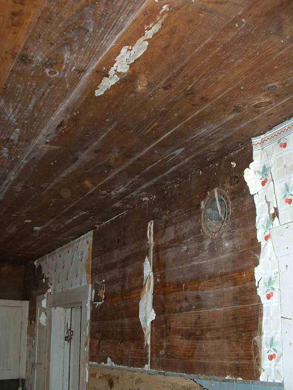 Need Advice on Farmhouse Remodel-dscf0038.jpg