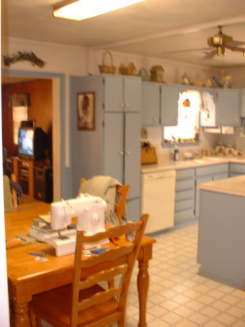 What color to paint kitchen cabinets?-dscf0041.jpg