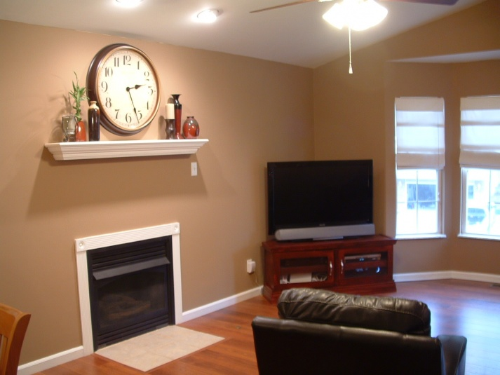 color choice for my living room with dark brown hardwood floors-dscf0076.jpg