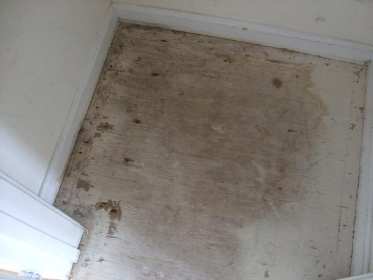 Should I Replace My Plywood Subfloors Flooring Diy