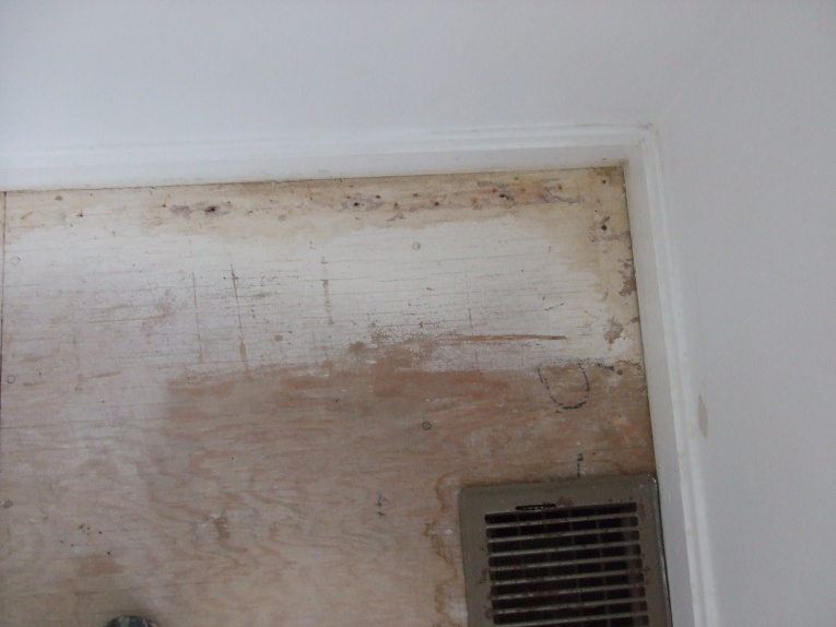 Should I replace my plywood subfloors?-dscf0295.jpg